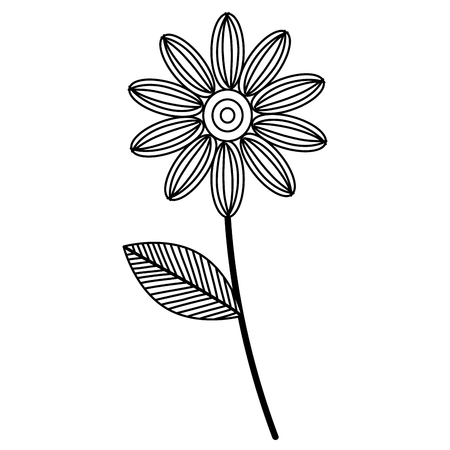 beautiful flower drawing monochrome vector illustration design
