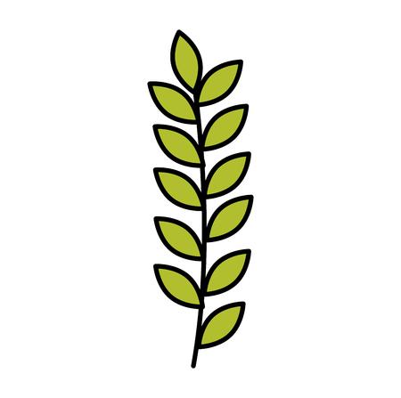 Branch with leafs decorative icon vector illustration design Иллюстрация