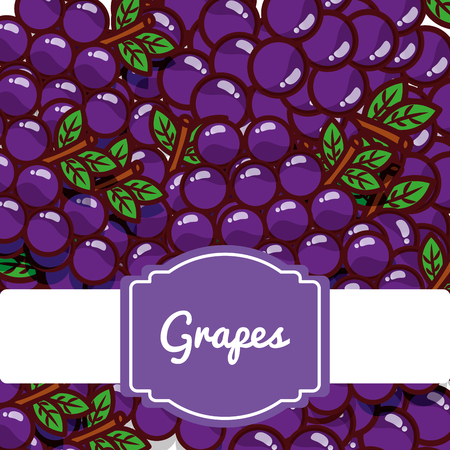 Delicious grapes fresh fruit label pattern vector illustration 일러스트