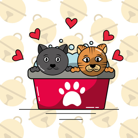 pets cat in bathtub washing clean care love vector illustration
