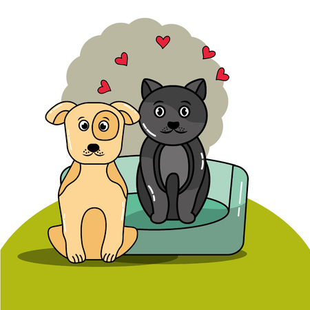 pet cat and dog with bed cushion vector illustration Illustration
