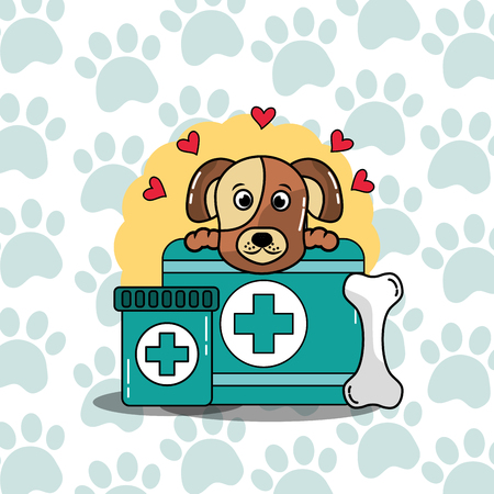 veterinary medical care to pet dog case medicine care vector illustration