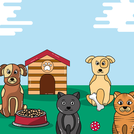pets cats and dogs food bowl and wooden house toy vector illustration