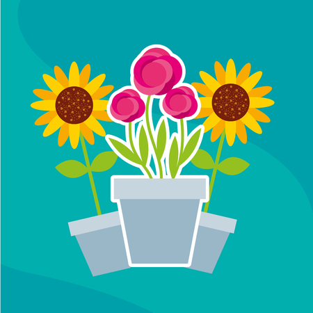 flowers roses and sunflowers in pot garden vector illustration