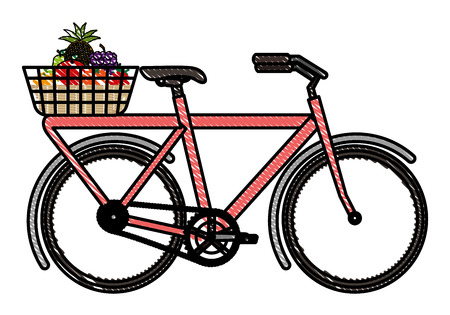 bicycle with basket of fruits vector illustration design 向量圖像