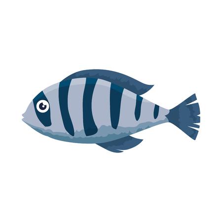 cute ornamental fish icon vector illustration design