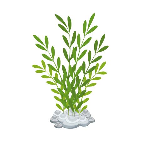 水族館装飾海藻アイコンベクトルイラストデザイン
