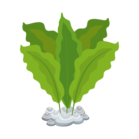 aquarium decorative seaweed icon vector illustration design