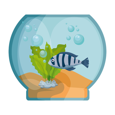 aquarium bowl with colors fish vector illustration design