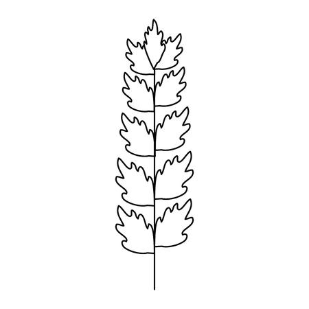 blad van mariene plant vector illustratie ontwerp