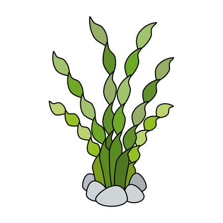 Aquarium decorative seaweed icon vector illustration design. Reklamní fotografie - 99888702