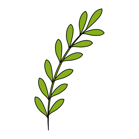 Leaf of marine plant vector illustration design. Ilustrace