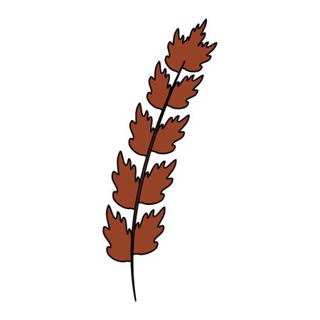 Leaf of marine plant vector illustration design Reklamní fotografie - 99888711