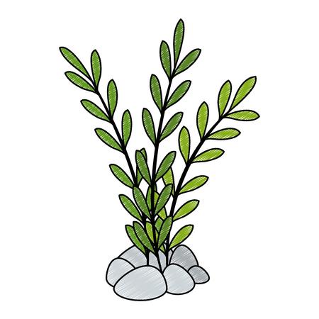 Aquarium decorative seaweed icon vector illustration design Illusztráció