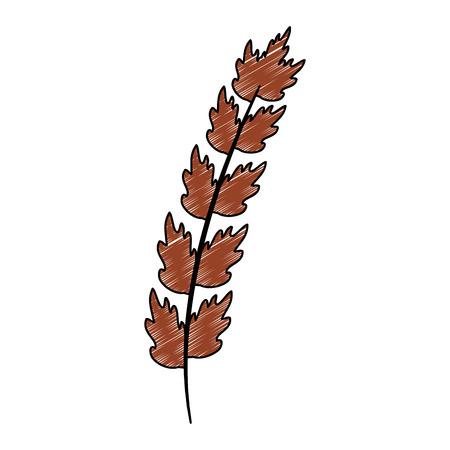 Leaf of marine plant vector illustration design