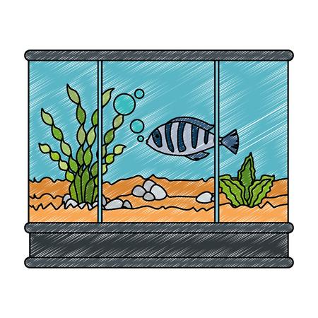 square aquarium with colors fish vector illustration design Ilustração