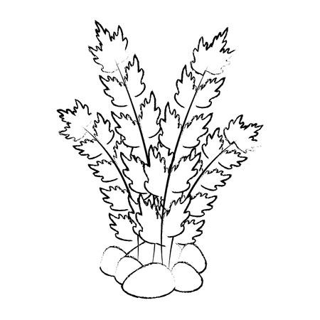 ontwerp van de het pictogram het vectorillustratie van het aquarium decoratieve zeewier