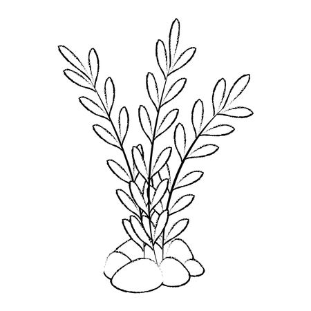 aquarium decorative seaweed icon vector illustration design