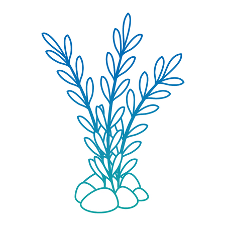 Aquarium decorative seaweed icon vector illustration design.