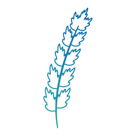 Leaf of marine plant vector illustration design. Ilustrace