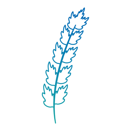 Leaf of marine plant vector illustration design. Illustration