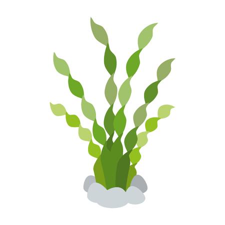 Aquarium decorative seaweed icon vector illustration design.