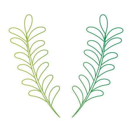 Leaf branch natural icon vector illustration design