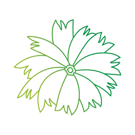 beautiful flower garden icon vector illustration design 일러스트