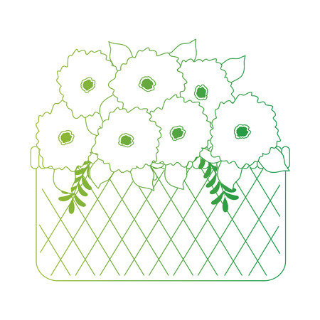 flowers decoration in basket vector illustration design