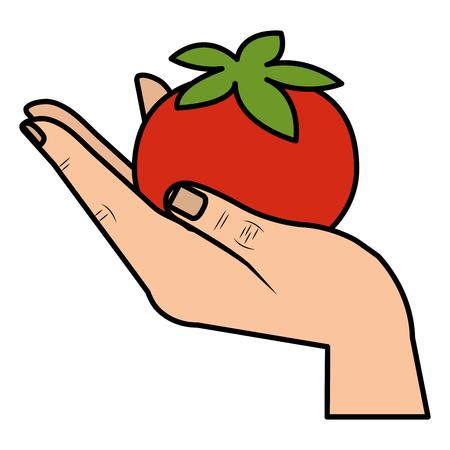 hand lifting tomato vegetable healthy food vector illustration design