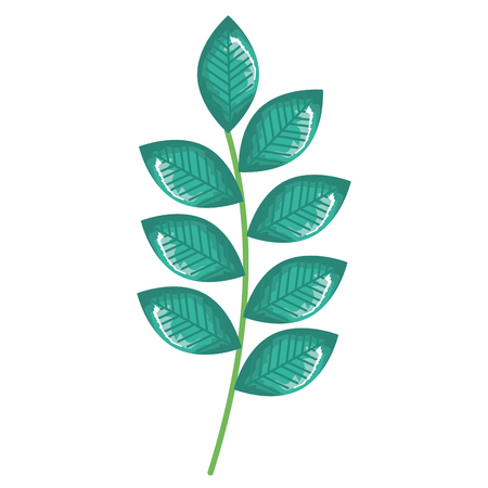 Branch with leafs decorative icon vector illustration design.