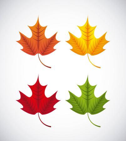 4 colored set of maple leaf Ilustração