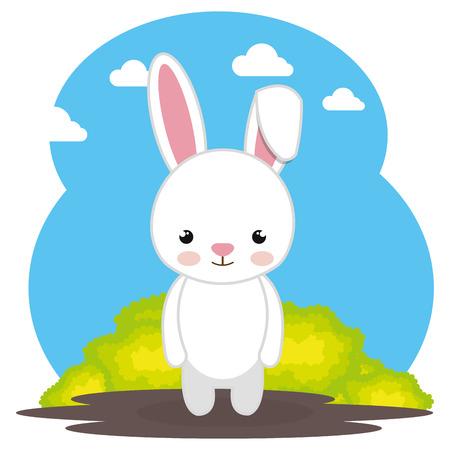 cute rabbit in the field landscape character vector illustration design 일러스트