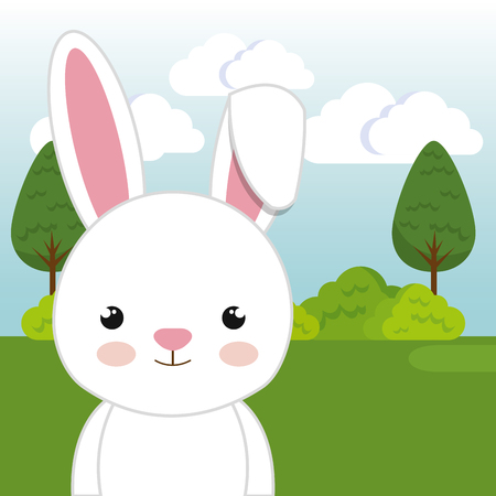 cute rabbit in the field landscape character vector illustration design Foto de archivo - 100508188