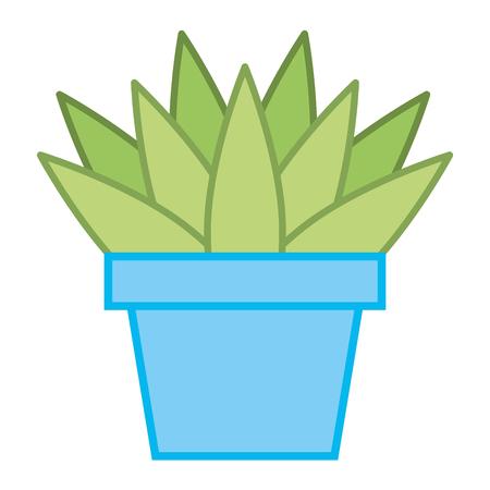 house plant in pot vector illustration design Illustration