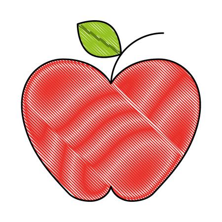fresh apple organic fruit health vector illustration drawing