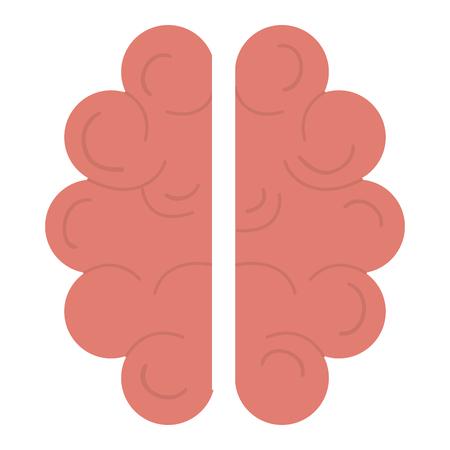 Human brain organ icon vector illustration design