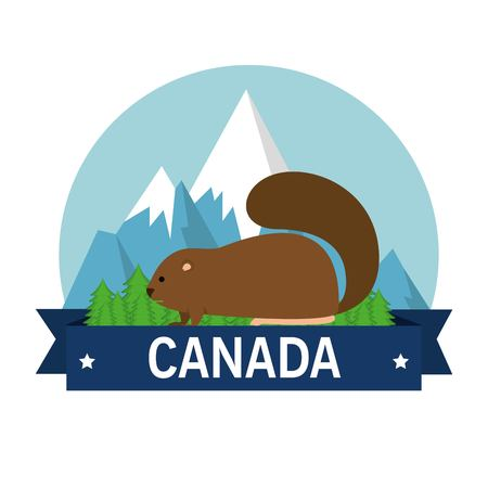 Beaver animal  illustration design