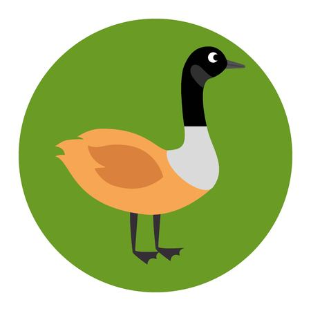 canadian duck scene icon vector illustration design 일러스트