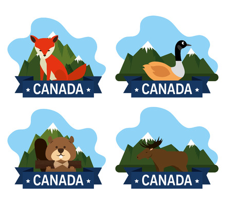 Canadian culture group of animals vector illustration design