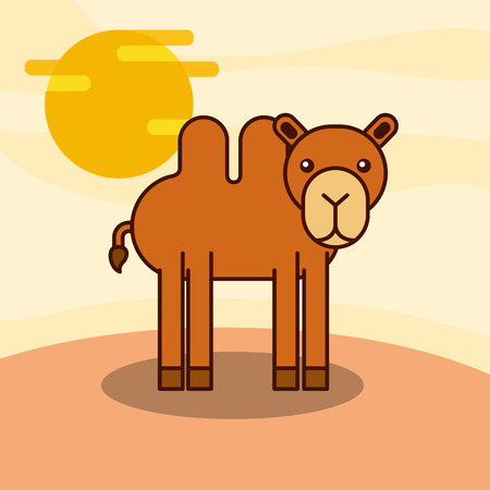 camel desert wildlife animal african vector illustration
