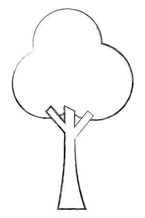 leafy tree foliage natural image vector illustration sketch Reklamní fotografie - 101044240