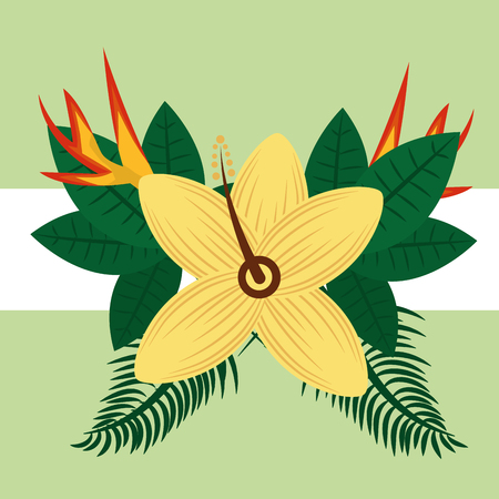 Summer time tropical hibiscus and bird of paradise flowers vector illustration. Illustration