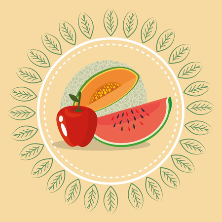 fresh fruits healthy food vector illustration design Stock Illustratie