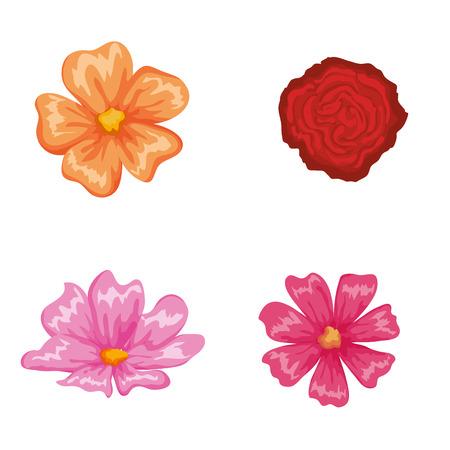 beautiful flowers set decorative icon vector illustration design