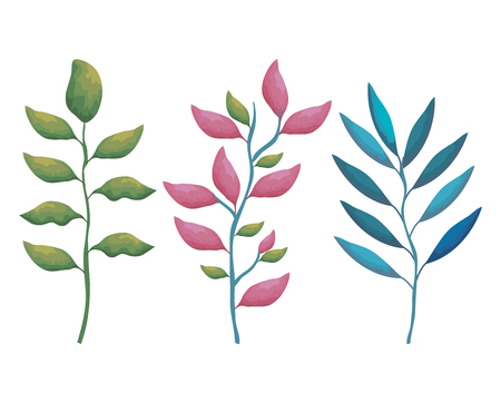 branches with leafs decorative icon vector illustration design