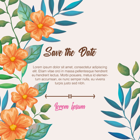 flowers and leafs invitation card vector illustration design
