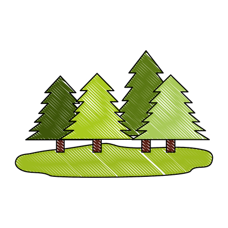 forest pine trees nature ecology vector illustration drawing