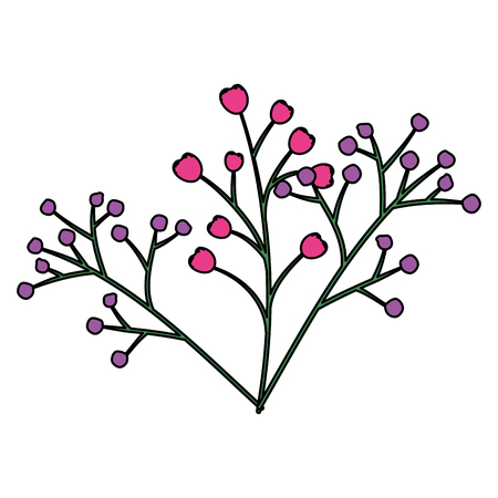 branch with seeds natural icon vector illustration design
