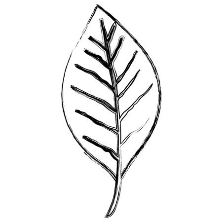 leaf single decorative icon vector illustration design